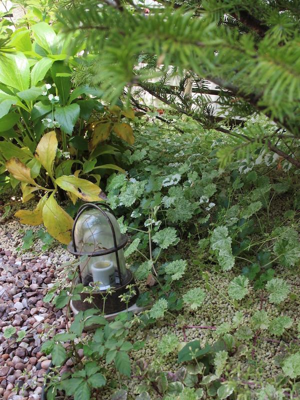 住宅花壇写真